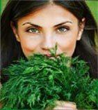 Травы в качестве приправы